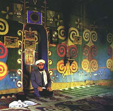 Turkman P8
