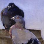 The Pigeon-Fancier